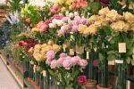 Curso de arranjos de flores artificiais